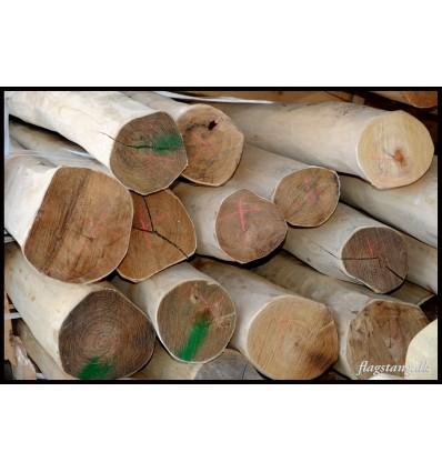 Afbarket og pudset stolpe i Robinie træ Ø16-18 cm.