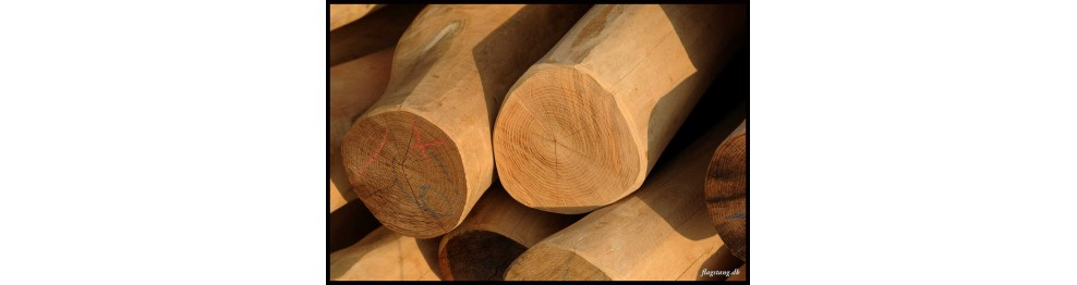 Afbarket og pudset stolper i Robinie træ